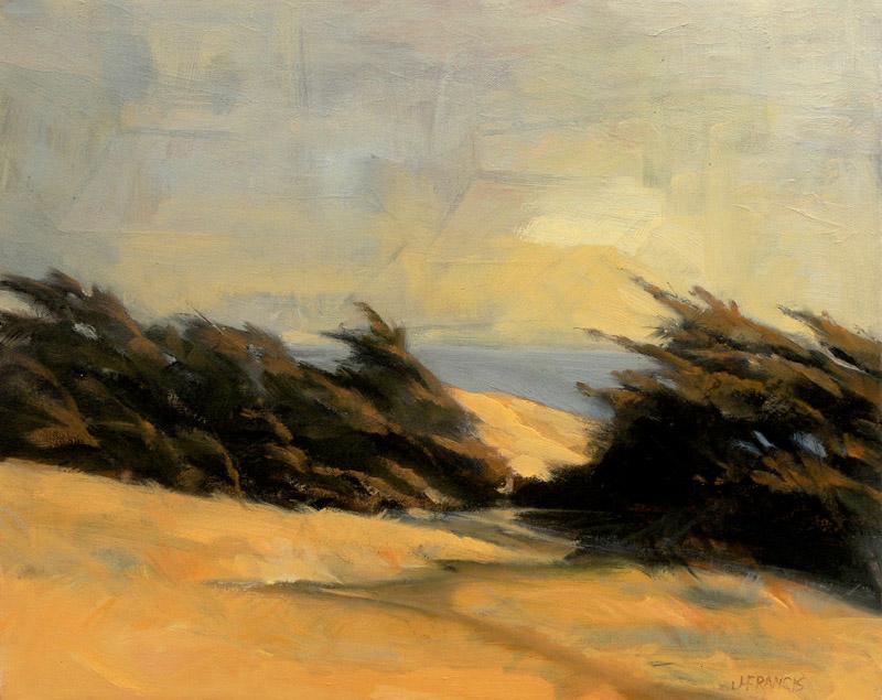 Marin Coast - Jon Francis